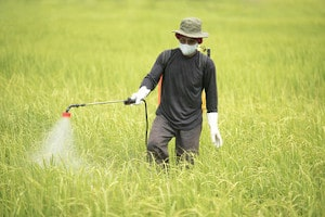 Pesticides & Explosive